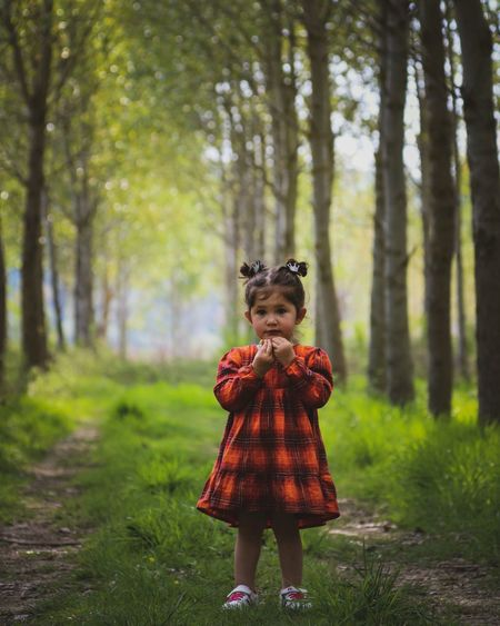 Full length of girl standing by tree in forest