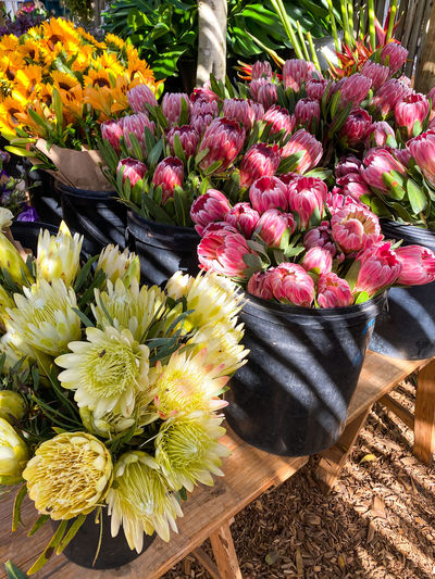 High angle view of tulips in market
