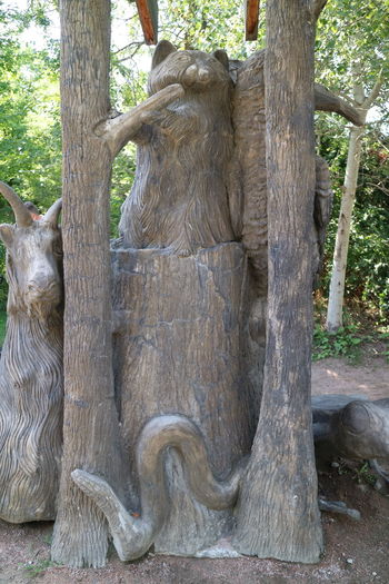 Animal Carvings Day Nature No People Outdoors Statues Toronto Zoo Tree Tree Trunk