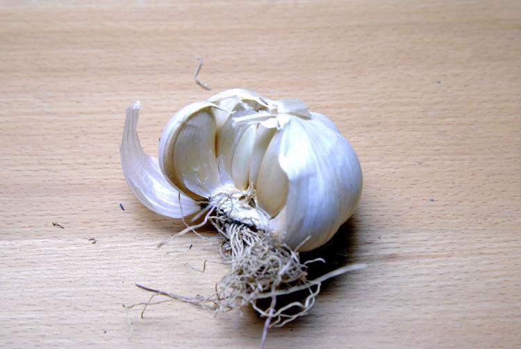 the garlic Garlic Close-up Day Garlic Clove Garlic Cloves Indoors  No People Organic Spice Vegetable