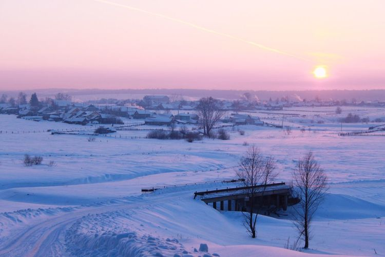 Scenic view of snow covered field