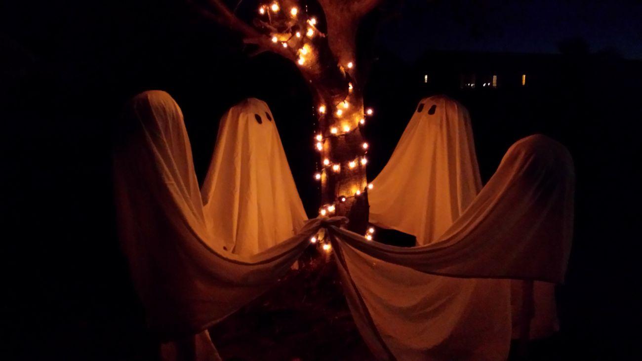 Halloween_Collec