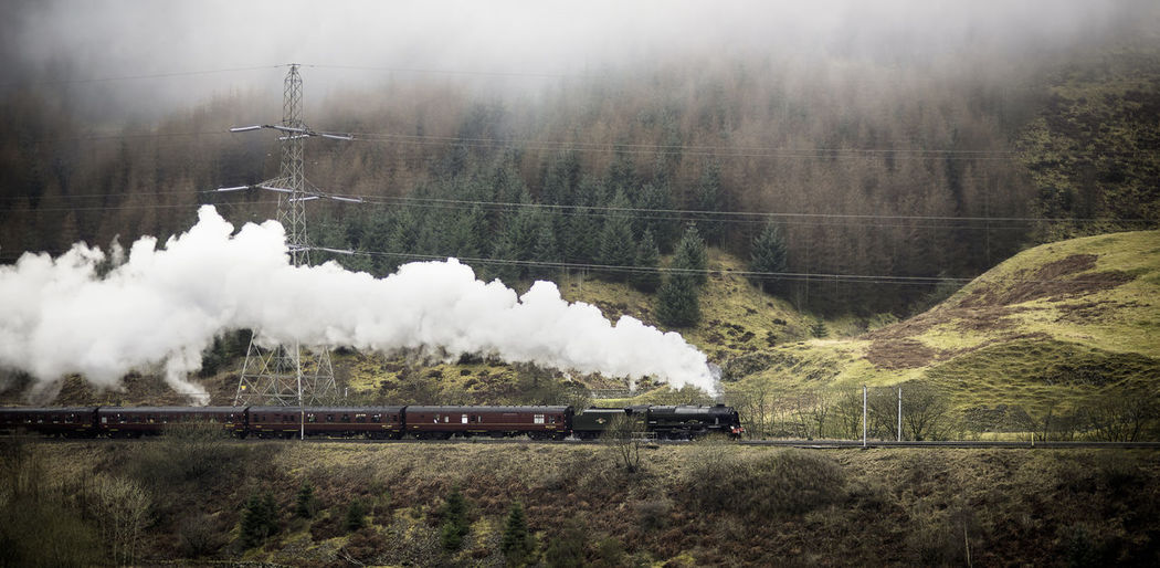 912 - 20170311 - The Scots Guardsman The Scots Guardsman Air Pollution Day Emitting Environment Land Land Vehicle Landscape Mode Of Transportation Motion Nature No People on the move Outdoors Plant Pollution Public Transportation Rail Transportation Smoke - Physical Structure Steam Train Track Train Train - Vehicle Transportation Tree
