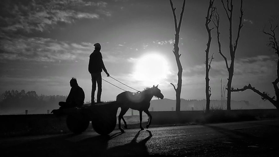 Morning Mobilephotography Bw Blackandwhite Dramatic Sky EyeEm Horse Two People Riding People Silhouette Adult Domestic Animals Full Length Men Adults Only Outdoors Mammal Sky Competition Day