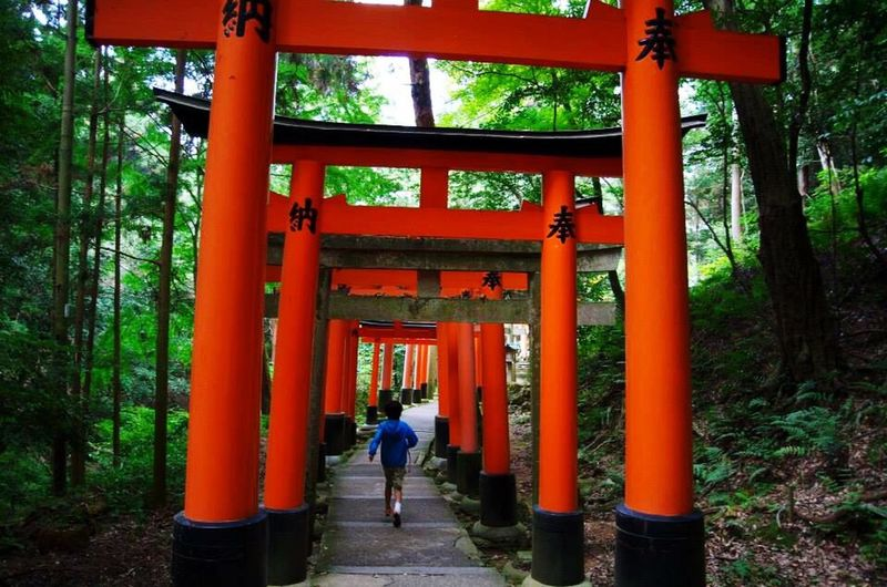 Kyoto City Fushimi Inari Shrine PENTAX K-30 Learn & Shoot: Working To A Brief Ultimate Japan
