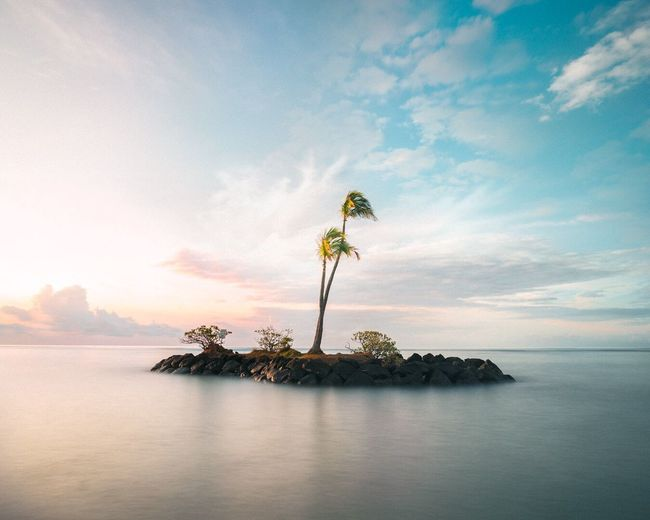 My favorite photo for now 😁🤙🏽 Sea Sky Water Tranquility Beauty In Nature Tranquil Scene Cloud - Sky Waterfront Horizon Over Water Nature One Person Scenics Outdoors Sunset Day People Hawaii Island Palm Tree Lonley Sky And Clouds Sunrise Sunset_collection Lost In The Landscape Lost In The Landscape