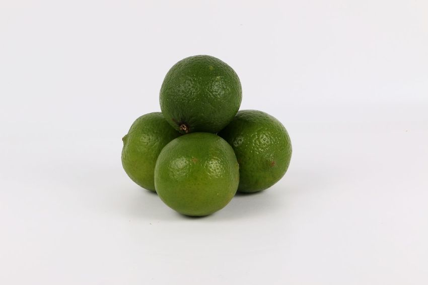 four limettes lying in the studio Food And Drink Four Freshness Green Stillleben Close-up Eyeem Food  Food Food And Drink Fresh Freshness Fruit Fruits Green Color Healthy Eating Healthy Food Lime Limette Limetten No People Sour Studio Shot White Background