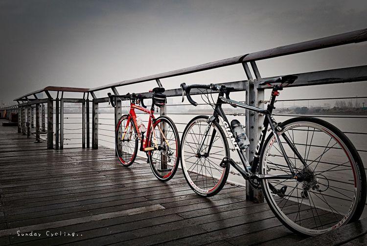 壹月拾捌日。週日的午後,把握好天氣出門小踩一圈曬曬太陽吧.... ??? Shanghai Sunday Cycling