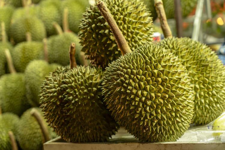 Big durian,