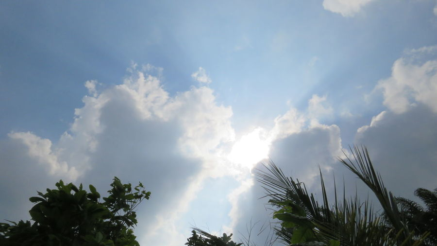 Cloud - Sky Sky Day Outdoors