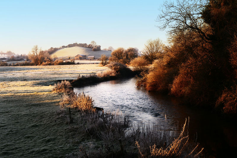 Frosty morning. Bare Tree Frosty Sunrise Bridge - Man Made Structure Day Nature No People Outdoors Reflection Reflection Lake Scenics Sky Sunset Tree Water The Great Outdoors - 2017 EyeEm Awards BYOPaper! Lost In The Landscape Perspectives On Nature