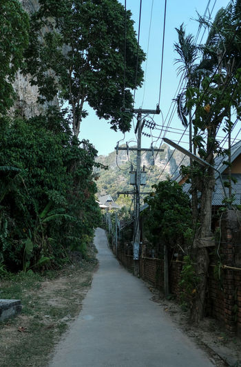 Footpath amidst trees and buildings against sky