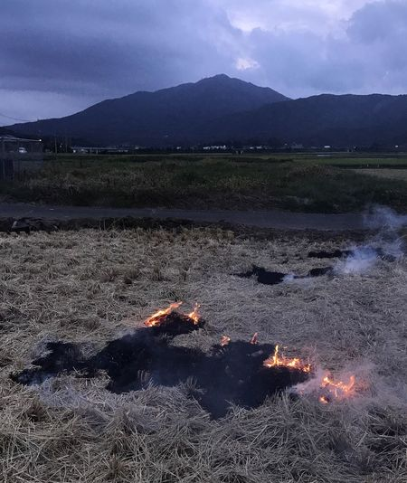 野焼きの田んぼからの加波山 コンバインで稲刈りが終わった田んぼの細切れの藁を野焼きしてたので、「撮らしてもらいます」と声を掛けたら、役人が証拠写真を撮ってるのかと不安そうに近寄って来たんで、「ただの写真撮りです」よとお声がけ‥‥‥ 動画: https://instagram.com/p/BY5WjsRg0Ek/