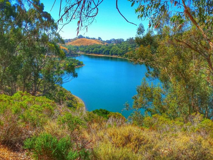 Lake Nature Nature_collection
