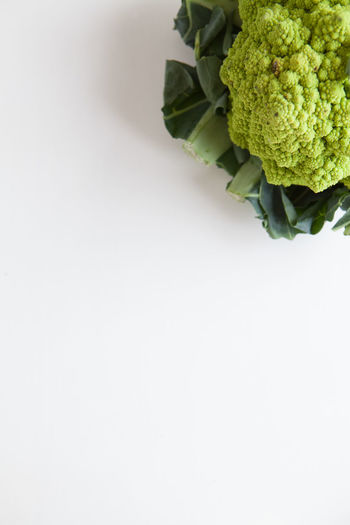 Fresh vegetables, green cauliflower on a white background top view Studio Shot Vegetable Healthy Eating Food And Drink Copy Space Indoors  Freshness Food Green Color Wellbeing Still Life White Background Close-up No People Green Single Object Cut Out Organic Directly Above Broccoli