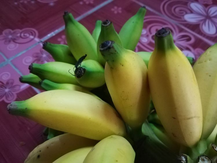 Beauty In Nature Healthy Eating Fruit Green Color No People Banana Close-up Indoors  Day Nature Lover Multi Colored Banana Fruit Banana Blossom Fruit Photography Fruits Lover Fruits ♡ Fruitphotography Fruits Photography Fruit Blossom Banana
