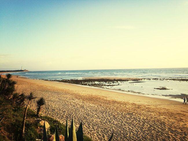 Life Is A Beach nature Enjoying Life
