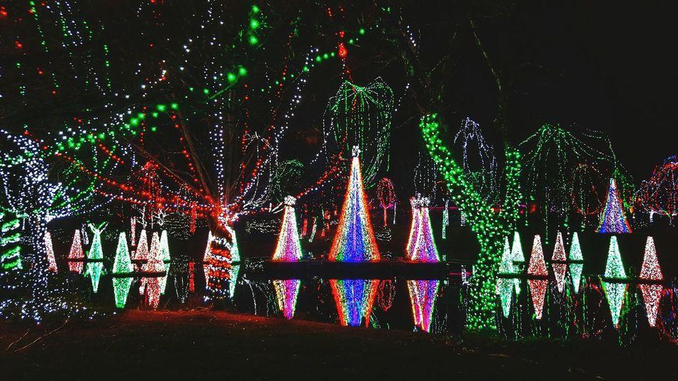 Best Christmas Lights Holidays Christmas Lights Christmaslights Xmas Night Lights Happy Holidays! Christmas Lights!