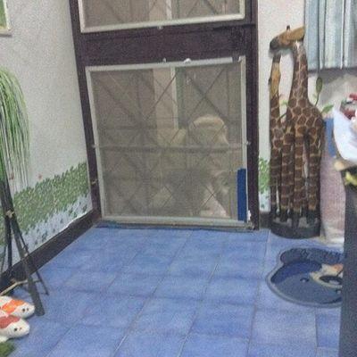 หมาที่บ้านก็ดูบอล สิ้นเสียงนกหวีดปุ๊บ มาเคาะประตูเรียกปั๊บ 5555 Dog Pet Pet13 Goldenretriever