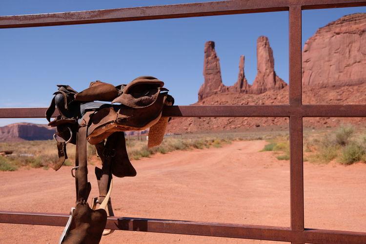 Horse cart in desert