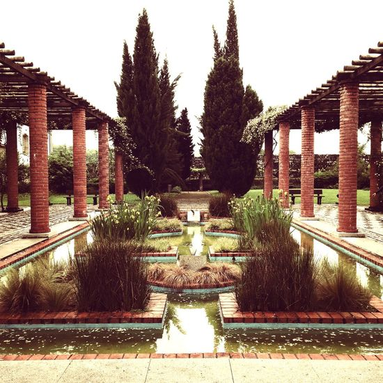 Roman garden, Portugal. Portugal Portugaligers Eye4photography  IPhoneography Flowers Trees History