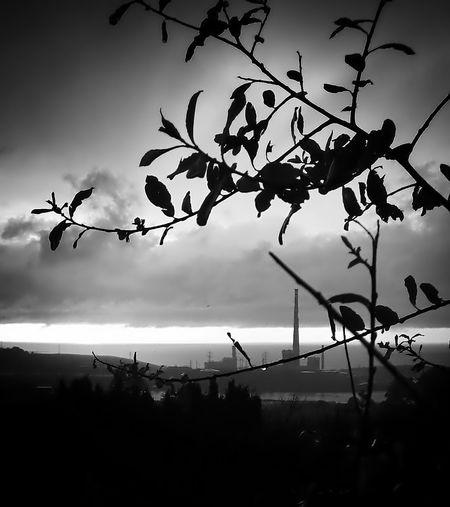 buenas noches;-) Amazing View Landscape Landscape_Collection