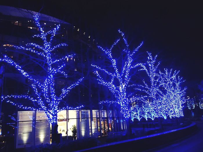 IPhoneography Roppongi Illumination Winter Tokyomidtown
