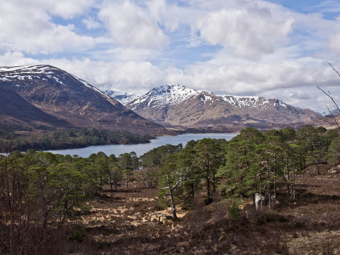Glen Affric Loch Affric Scotland Walk Beauty In Nature Cloud - Sky Day Environment Growth Lake Landscape Mountain Range Mountains Nature No People Outdoors Scenery Scenics - Nature Sky Snow Snow Covered Snowcapped Mountain Tranquil Scene Water Wilderness