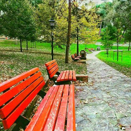 Turkey ıstanbul Emirgan Emirgan Korusu Emirgan Park