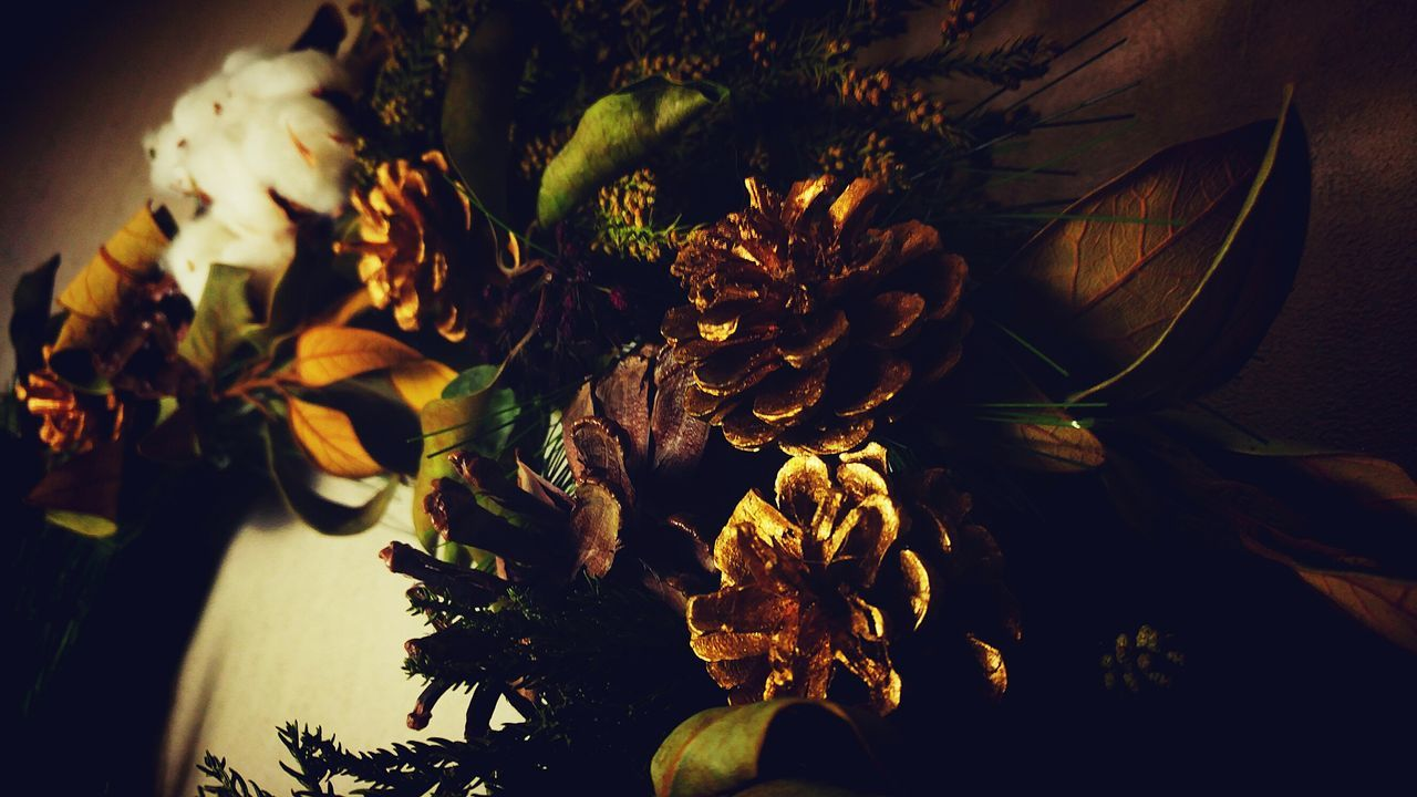 flower, plant, nature, indoors, no people, sunflower, vase, beauty in nature, growth, close-up, leaf, fragility, flower head, bouquet, freshness, day