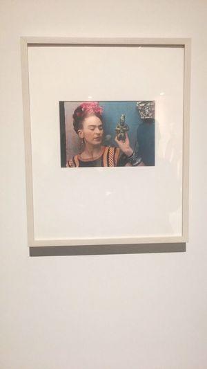 Frida Frida Kahlo Frida Kahlo Museum