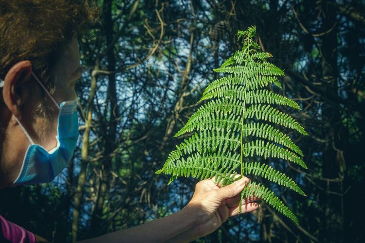 Midsection of woman holding leaf against trees