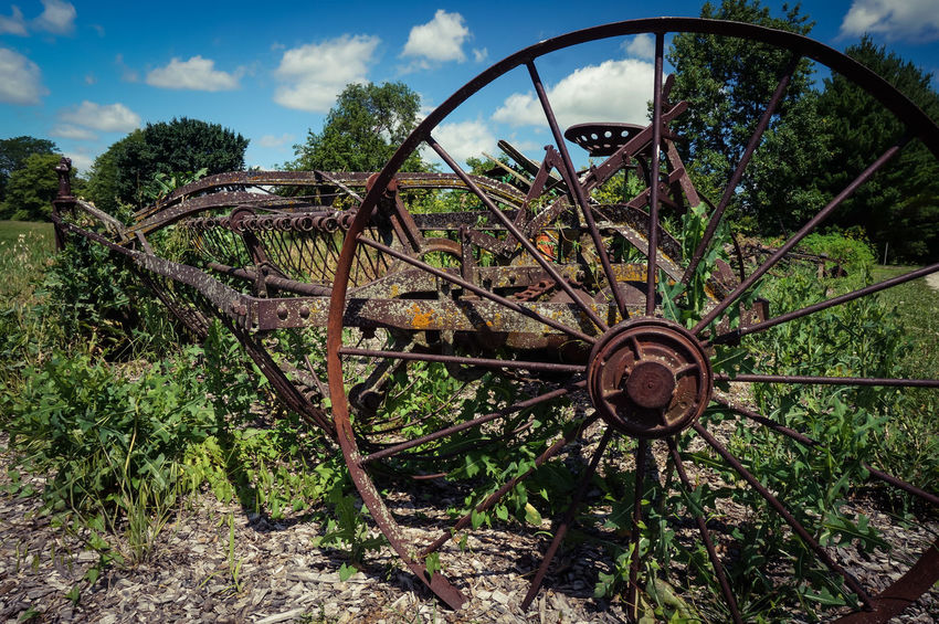 Wheel Day No People Wagon Wheel Outdoors Growth Tree Spoke Sky Old Tractor