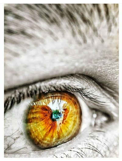 Into your eyes
