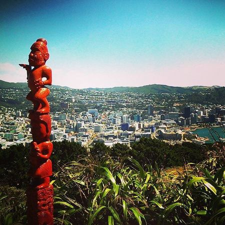 View Mountvictoria Mountvictorialookout Wellingtonnz