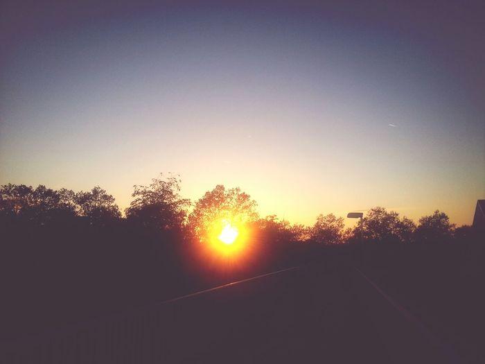 Autumn Enjoying The Sun Sky Sunset