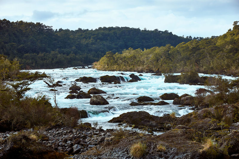 Petrohue river... EyeEmNewHere Aroundtheworld Beauty In Nature Day Flowing Flowing Water Forest Growth Land Nature No People Non-urban Scene Outdoors Plant River Rock Rock - Object Scenics Scenics - Nature Sky Solid Tranquil Scene Tranquility Tree Water
