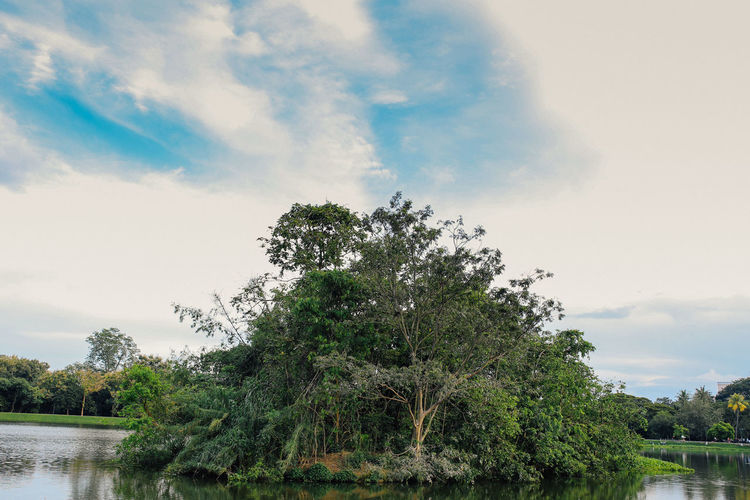Sky Plant Tree Water Cloud - Sky Nature Growth Beauty In Nature River No People Outdoors Day Green Color Environment