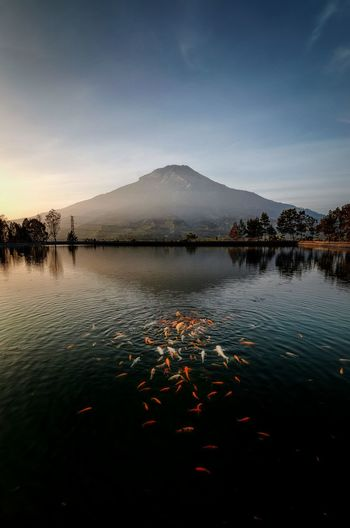 Scenic view of lake against sky during sunset, indonesia landscapes
