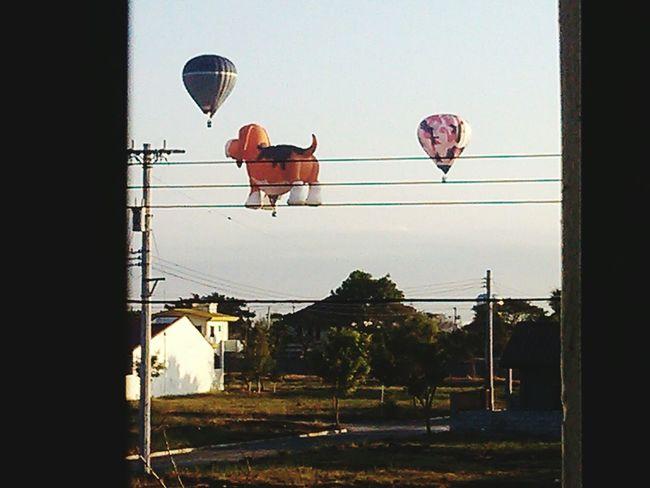 More Hot air balloons Taking Photos Hot Air Balloonsai