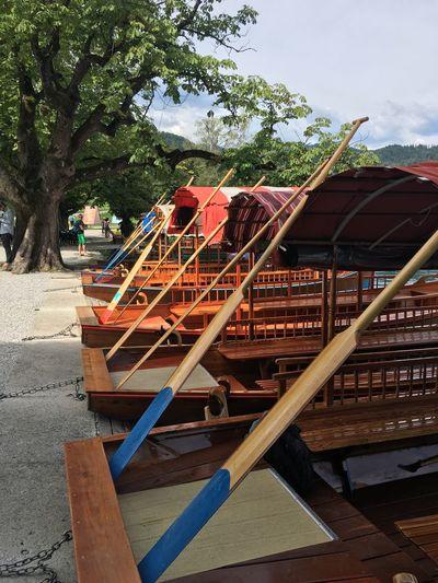 Row of Pletna boats on the shore of Lake Bled Bled Bled Boat Boat Day Lake Bled Oar Outdoors People Pivotal Ideas Pletna Boat Sky Slovenia Sunny Taking Photos Transportation Travel Tree The Magic Mission Beautifully Organized