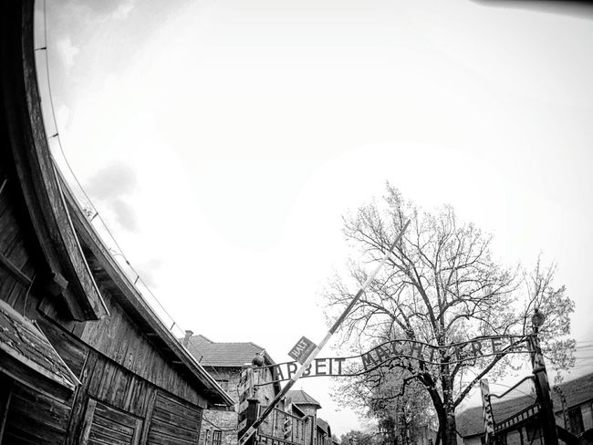 Aushwitz Architecture Travel Olympus Fisheye