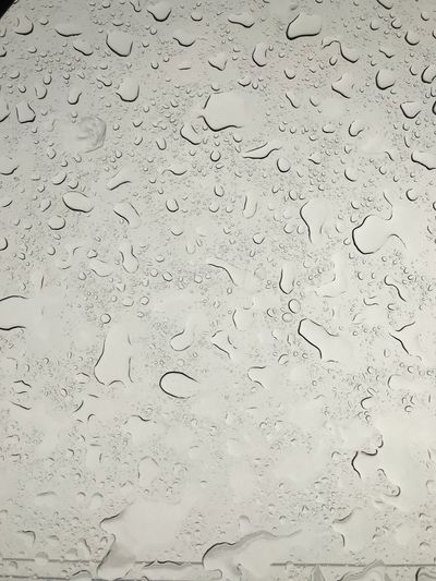 Full Frame Water Backgrounds Wet Drop No People Rain Abstract RainDrop Pattern Textured  Indoors  Nature Close-up Day Rainy Season Purity Transparent Glass - Material Window