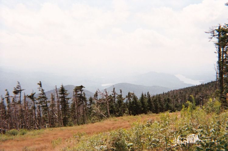 Adirondack Mountains Beauty In Nature Clouds Forest Landscape Mountain Nature No People Outdoors Scenics Sky Tranquility Wilderness