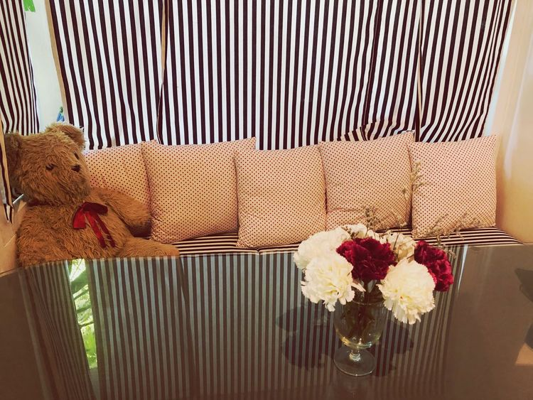 reception room EyeEm Selects Flower Flowering Plant Furniture No People Cat Indoors  Plant Feline Relaxation Nature Pattern Day Sunlight Sofa Metal Home Interior Mammal Fence Chair Pets