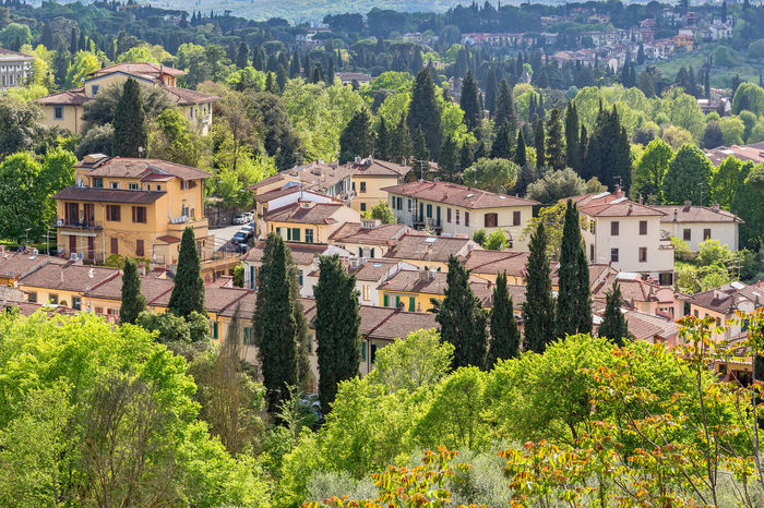 Italian village in forest landscape Village Country Country Living Florence Italy Houses Travel Tuscany Above View Aerial View Architecture Building Exterior Built Structure City Cityhouse Day House Italy Landscape No People Outdoors Residental Rural Scene Springtime Townhouse Tree