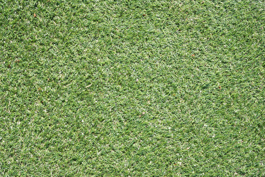 American Football Field Background Day Field Full Frame Grass Green - Golf Course Green Color Growth High Angle View Lawn Nature No People Outdoors Plant Playing Field Soccer Soccer Field Sport Sports Surface Texture Textured  Textured Effect Turf