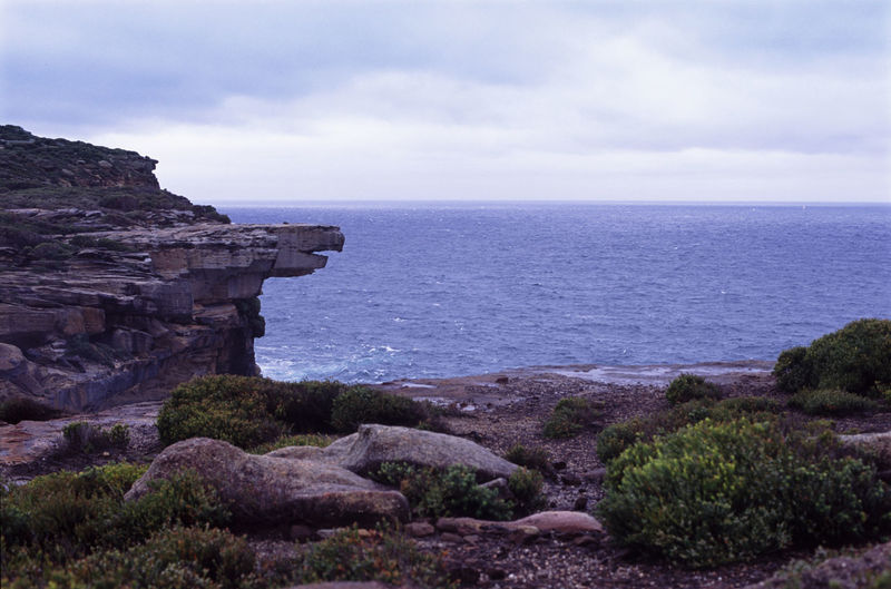 eagle rock in the royal national park, new south wales, australia Australia Cliff Cliffs Coastline Eagle Rock Formation Horizon Over Water Landmark Near Sydney New South Wales  Nsw Rock Rock Formation Rocks Scenic Scenics Sea Sky Storm Stormy Water