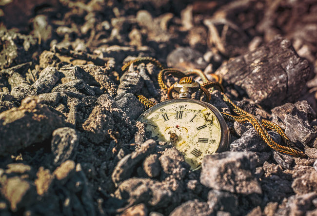 Still life with antique rotten pocket watch on ashes in the forest at the sunset Ashes Of Time Ashes To Ashes Ashes. Pocket Watch Pocket Watch, Antiques, Eyeem Best Edits, Ashes Ashes_remain Ashesoftime Clock Clock Time Clocks Pocket  Pocket Watches Time Busy Time Time Clock Time To Reflect