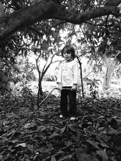My beloved nephew Blackandwhite Blackandwhite Photography Child Childhood Plant Real People Full Length Tree One Person Innocence Lifestyles Front View Males  Sunlight Nature Standing Boys Outdoors Growth Day